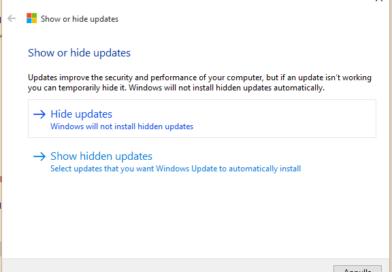 Come impedire aggiornamento driver su Windows 10