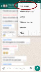 info gruppo whatsapp
